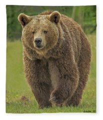 Brown Bear 1 Fleece Blanket