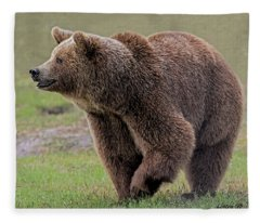 Brown Bear 14.5 Fleece Blanket