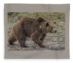 Brown Bear 6 Fleece Blanket