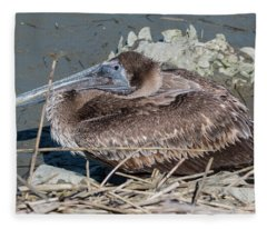 Brown Pelican 3 March 2018 Fleece Blanket