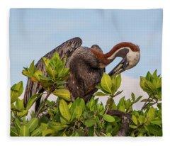 Brown Pelican, Galapagos Islands Fleece Blanket