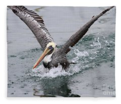Brown Pelican Landing On Water . 7d8372 Fleece Blanket