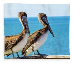 Brown Pelican Pair Fleece Blanket