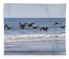 Brown Pelicans In Flight Fleece Blanket