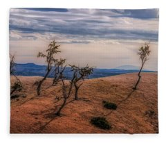 Bryce Landscape Fleece Blanket