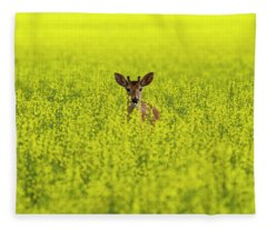 Buck In Canola Fleece Blanket