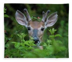 Buck In The Blackberries Fleece Blanket
