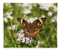 Buckeye Butterfly Posing Fleece Blanket