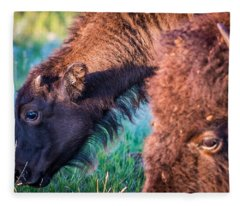 Buffalo Family Fleece Blanket