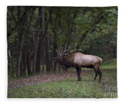 Bull Elk Bugle Fleece Blanket