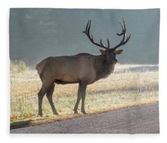 Bull Elk Watching Fleece Blanket