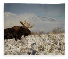 Bull Moose, Grand Teton National Park Fleece Blanket