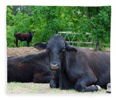 Bull Relaxing Fleece Blanket