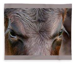 Bull's Eye Fleece Blanket
