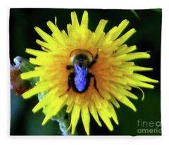 Bullseye Bumblebee Dandelion Fleece Blanket