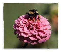Bumble Bee On Zinnia 2649 Fleece Blanket