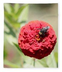 Bumble Bee On Zinnia Fleece Blanket