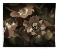 Bumblebee On Blush Country Rose In Sepia Tones Fleece Blanket