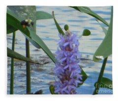 Bumblebee Pickerelweed Moth Fleece Blanket
