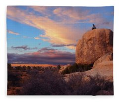 Burning Daylight Fleece Blanket