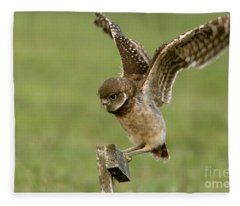 Burrowing Owl - Learning To Fly Fleece Blanket