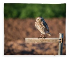 Burrowing Owl On A Perch Fleece Blanket