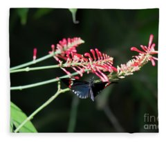 Butterfly In Flight Fleece Blanket