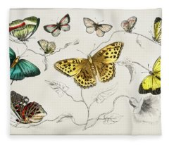 Butterflies From A History Of The Earth And Animated Nature Fleece Blanket