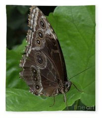 Butterfly 5 Fleece Blanket