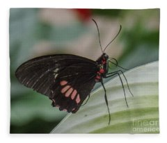 Butterfly 7 Fleece Blanket