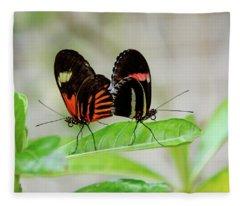 Butterfly Pair Fleece Blanket