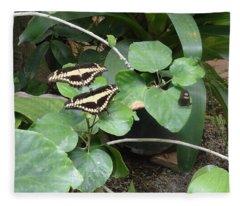 Butterfly Synchronicity Fleece Blanket