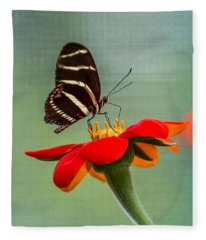 Butterfly Zebra Longwing On Zinnia Fleece Blanket