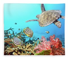 Turtle Fleece Blankets