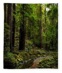 By The Stream In Muir Woods Fleece Blanket