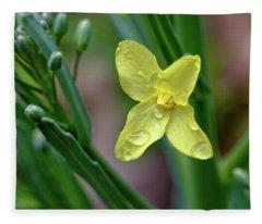 Cabbage Blossom Fleece Blanket