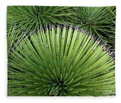 Cacti Composition Fleece Blanket