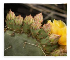 Cactus Amarilla Fleece Blanket