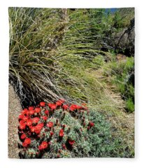 Crimson Barrel Cactus Fleece Blanket