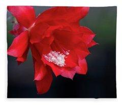 Cactus Blossom Fleece Blanket