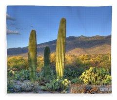 Cactus Desert Landscape Fleece Blanket