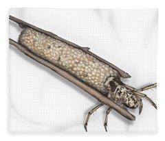 Caddisfly Limnephilidae Anabolia Nervosea Larva Nymph -  Fleece Blanket