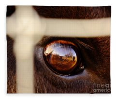 Caged Buffalo Reflects Fleece Blanket