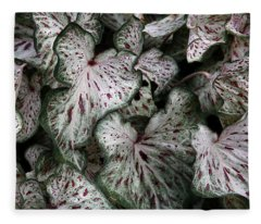 Caladium Leaves Fleece Blanket