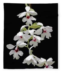 Calanthe Vestita Orchid Fleece Blanket
