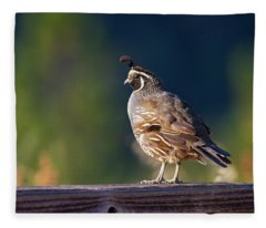 California Quail Fleece Blanket