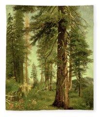 California Redwoods Fleece Blanket