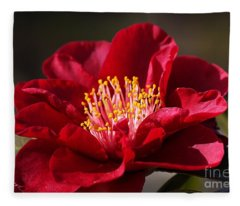 Camellia's In Style Fleece Blanket