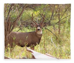 Camouflage Mule Deer Buck II Fleece Blanket