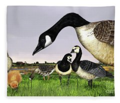 Canada Goose - Greylag Goose With Fledglings Chicks - White Fronted Goose -  Barnacle Goose Fleece Blanket